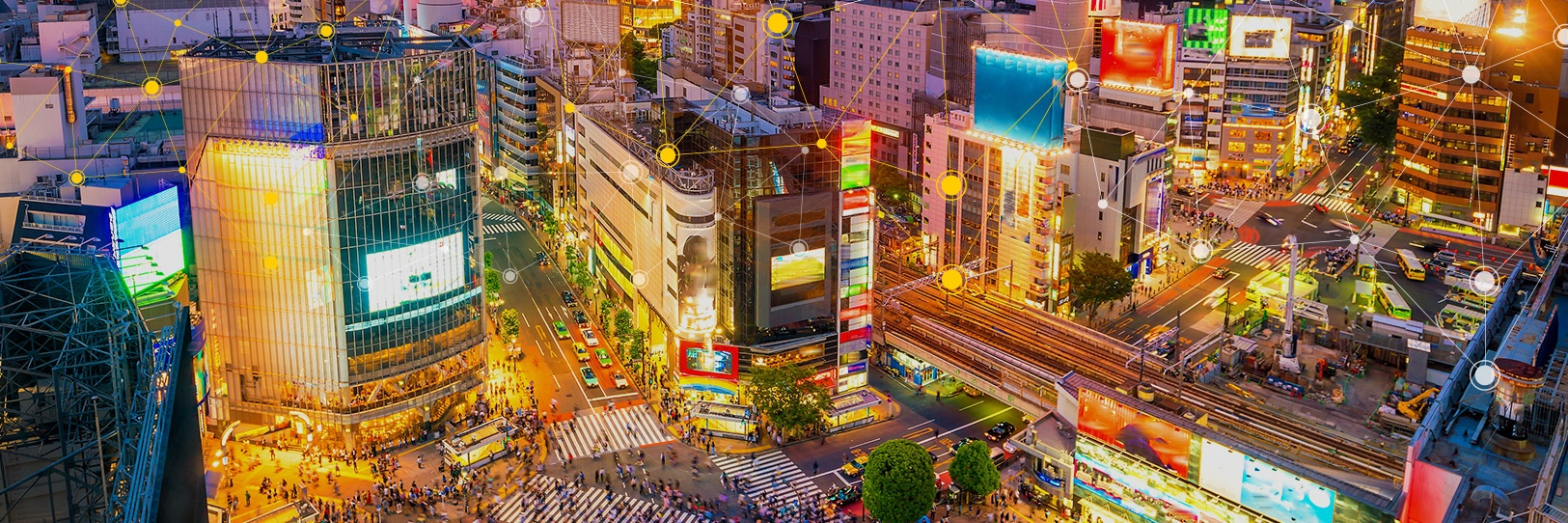 Global Data Protection Laws: Japan